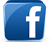 facebook icon to connect with Nancy Springer's Facebook page